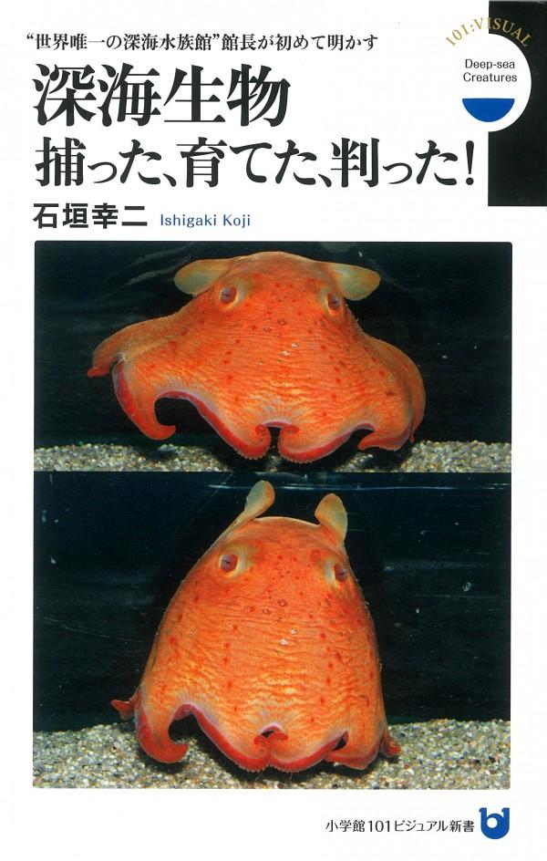 深海生物捕った、育てた、判った