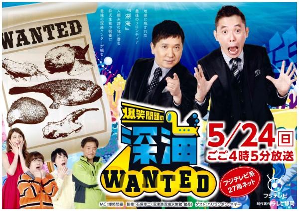 深海Wanted1