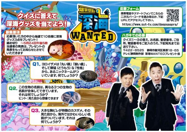 深海Wanted2